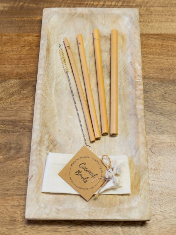 Coconut Bamboo Straws Set of 4