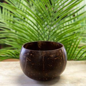 Coconut-Bowl3