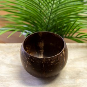 Coconut-Bowls2